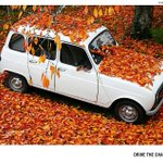 Herbstliches Wochenende ... http://t.co/MIKJF5Ve3i
