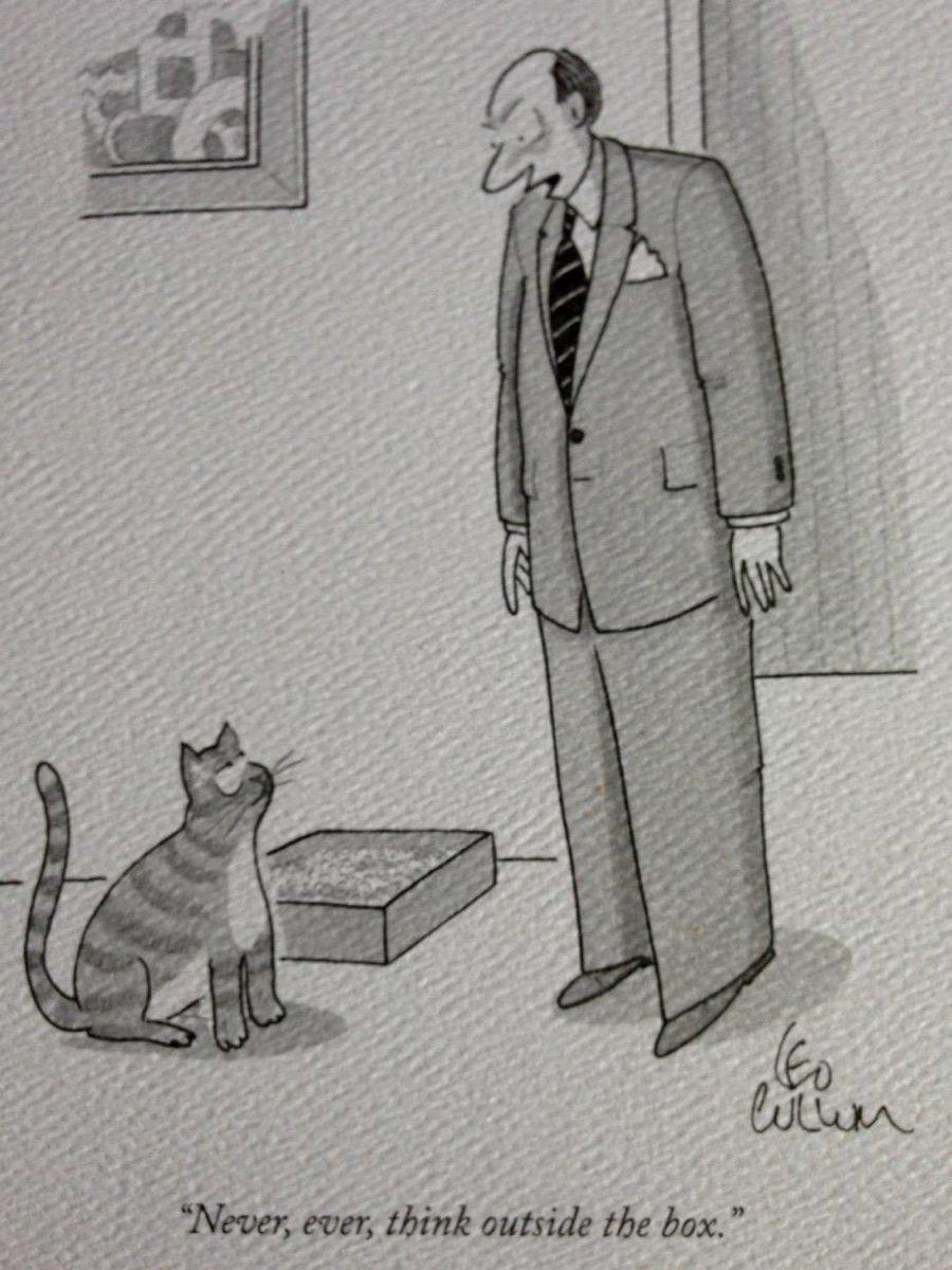 Why cats never make good entrepreneurs. http://t.co/Kk7Jo0uEv0