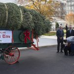 The Obamas welcomed the official White House Christmas tree today http://t.co/Agq7wYoT0N http://t.co/wTZH818GNw