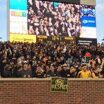 These #Mizzou fans are going wild as Tigers tie it up at 14 in the 4th! @41ActionNews http://t.co/8UDBGfquCd