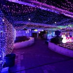 A look at the worlds largest Christmas lights display http://t.co/bRNrBoKeO9 http://t.co/bnkClXtJWc