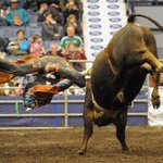 Tickets for tonights @CCA_Rodeo @Agribition are SOLD OUT. Get back in the saddle tomorrow: http://t.co/lYHLL3OrmF http://t.co/mF4yFRAYY7