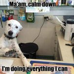 Ruff day for the customer service dept. http://t.co/B5r5S1K1bw