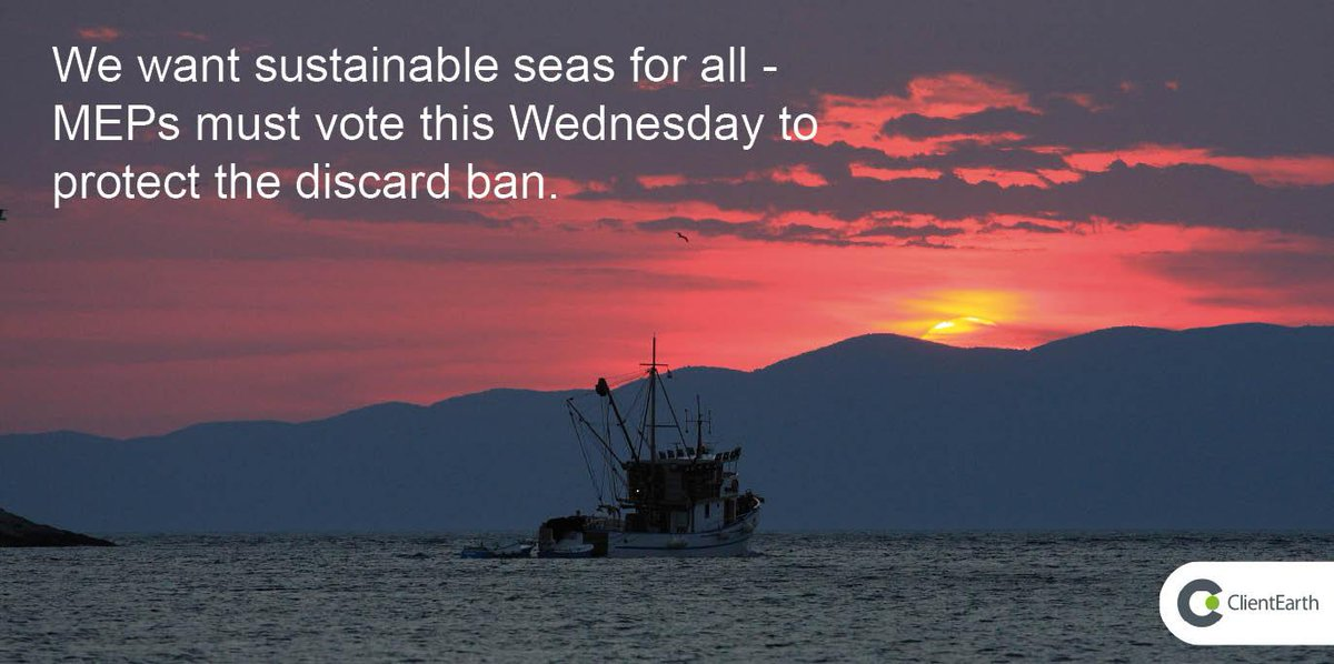 800,000 Europeans want sustainable #fishing. Call on politicians now to protect #discardban http://t.co/H7ULXVNOdp http://t.co/oKekZOl4Y7