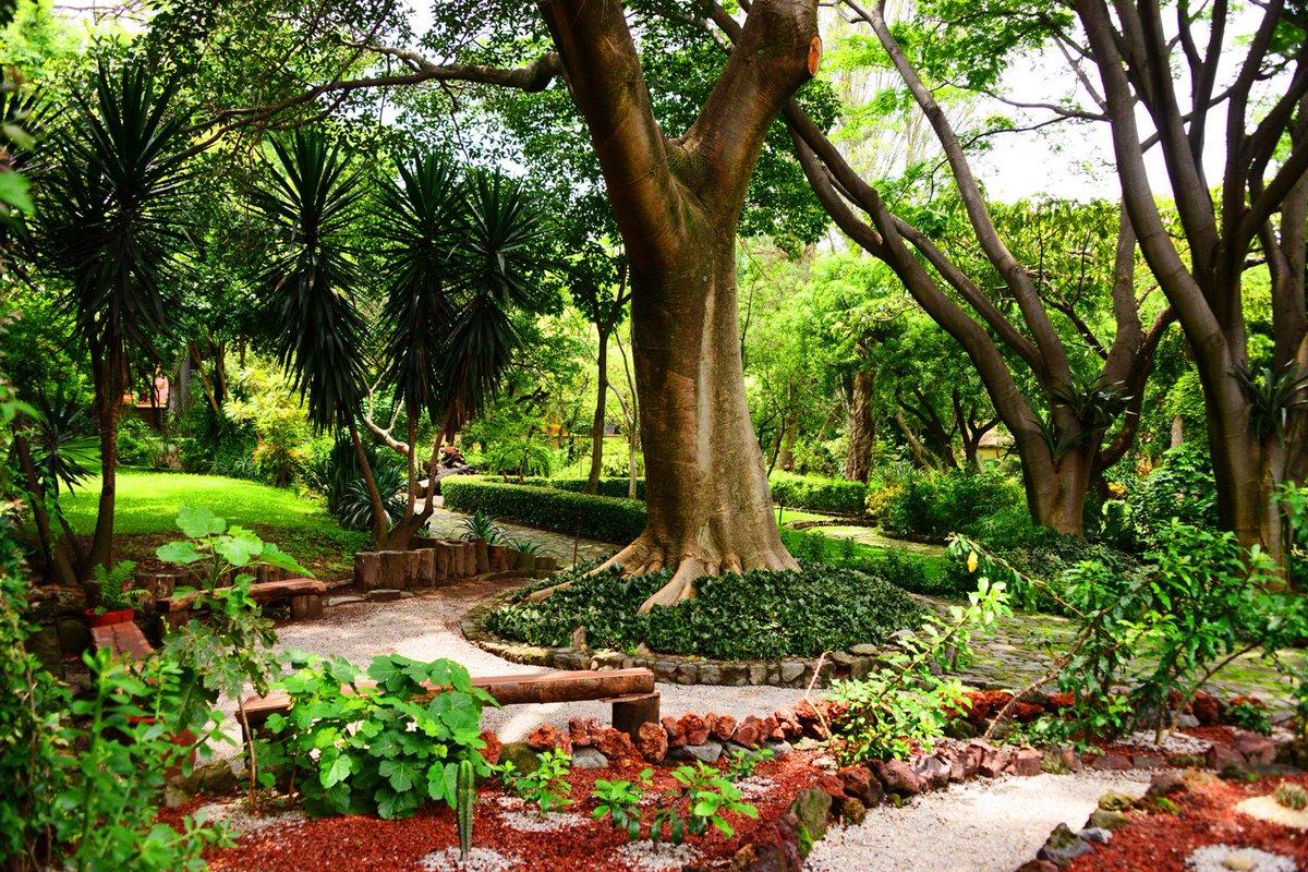 El Jardín Etnobotánico de #Cuernavaca hace más de 150 años fue casa de reposo del Emperador Maximiliano #MiPatrimonio http://t.co/Pt87ApPECB