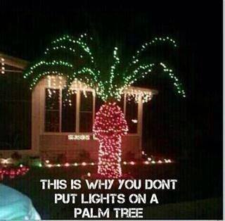 Why Floridians should never be allowed to decorate for #Christmas outside: #justsayin #florida http://t.co/1NvEUQcGFQ