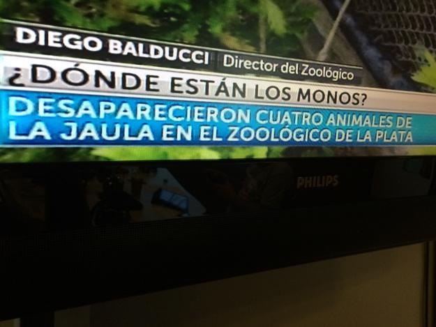 Madagascar! http://t.co/JxX36C72rG