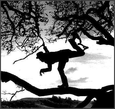 RT @Jopolkadot: Tom Waits by Anton Corbijn. http://t.co/upVAGFx5FK