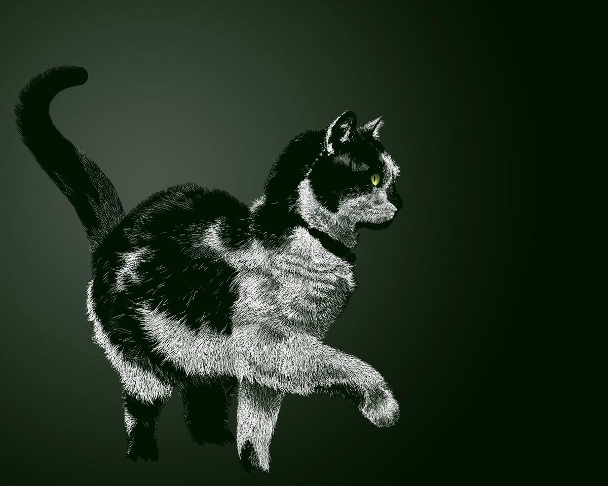 I commissioned someone to draw my @redditgifts secret santa's cat. Turned out amazing! http://t.co/BpeuLFHNiW