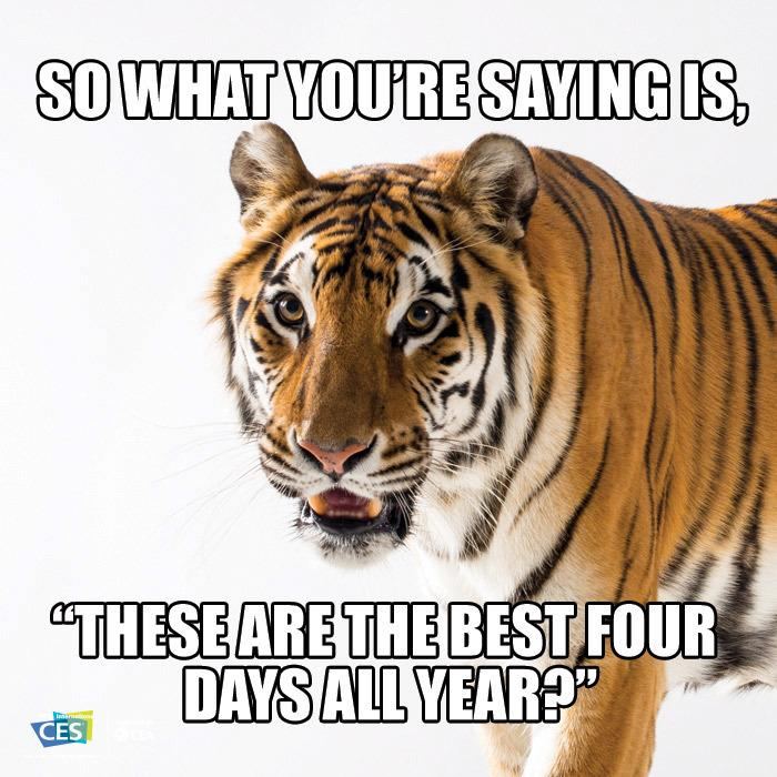Are you ready for #CES2015? Share why you're attending with our CES Meme Generator.  http://t.co/UCqEfqosas http://t.co/jvBjkOfXv6