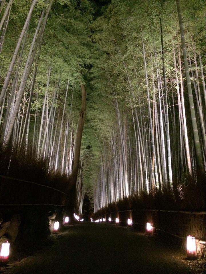 【試験点灯が実施されました!】 嵐山花灯路の開催も目前! 竹林の小径、亀山公園、渡月橋・嵐山山裾の試験点灯が行われ、プレスの方々が来場してくださいました。 開催はいよいよ明日12日から☆ みなさまのご来場を楽しみにしています^o^ http://t.co/FqGffxU2eZ