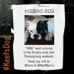 . @Suns forward @Keefmorris had his bulldog, King, go missing. Help us find #KeefsDog!