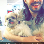 So @AndrewWK and @marniethedog stopped by today. Add