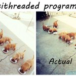 RT @rundavidrun: Apparently, a sufficient number of puppies can explain any computer science concept. Here we have multithreading: http://t…