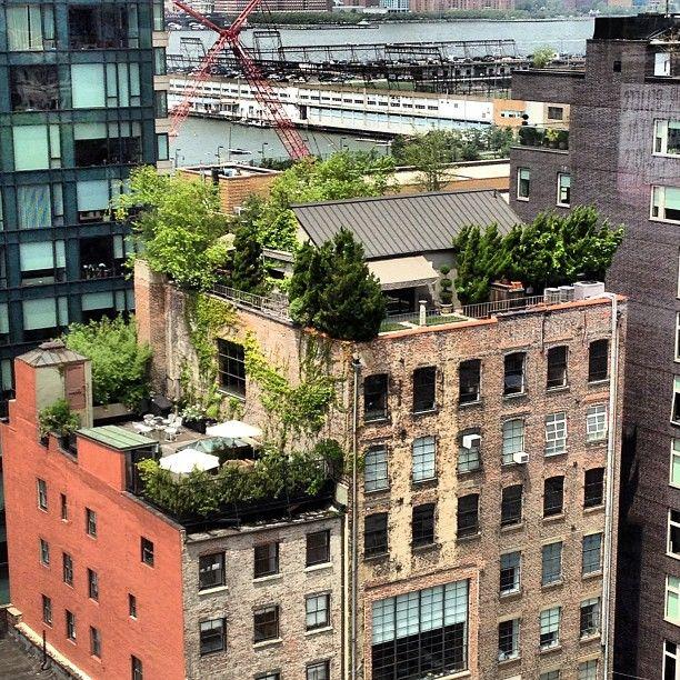 Ruimte om te leven in de #stad, waar vind je dat? Bv op onze #daken. @stadslevenams @Gebiedendewijs @RonnieAmsterdam http://t.co/mtySUNHae1