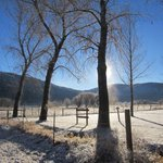 RT @ColoradoDays: snow evaporates off trees, Animas River valley, w/seasons first measurable snow in #Durango #CO http://t.co/IbolYOWANf