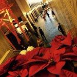 بيروت مدينة تعج بالحياة بالسعادة بالفرح الأحمر يملأ كل مكان مساء بيروت #مساء الخير http://t.co/CbY5mH31HT