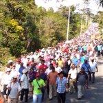 Ciudadanía en Ayutla, Guerrero caminan en estos momentos a sacar al ejército de sus tierras #YaMeCanse7 #AmoMexico RT http://t.co/cf286RwgaV