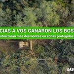¡RT! Hagamos que #GanaronLosBosques sea tendencia. Desde hoy no más autorización de desmontes en zonas protegidas. http://t.co/e6WxavR2bw