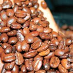 Kenyan coffee and espresso voted the best in the world in 2014 http://t.co/7iGDYx3N2p #Kenyancoffee http://t.co/GadcvZJzfO