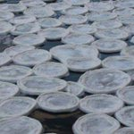 """Hundreds of """"ice pancakes"""" form on River Dee in Aberdeenshire http://t.co/NDxYN6JbwC http://t.co/ifQ4rAHen1"""