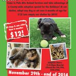 $12 cats & dogs for the holidays? Yep! Check out this deal from @paloaltoanimals & help us #EmptyOurShelter! http://t.co/f28XF8aiAC
