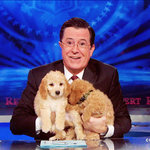 On air now: @nprfreshair pays tribute to Stephen Colbert and The Colbert Report. http://t.co/9groZ25C24 http://t.co/yWuddAjNqS