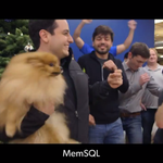 Happy to be featured in the @firstround holiday parody video - http://t.co/5GvIMRq20a http://t.co/YERapUqS4M