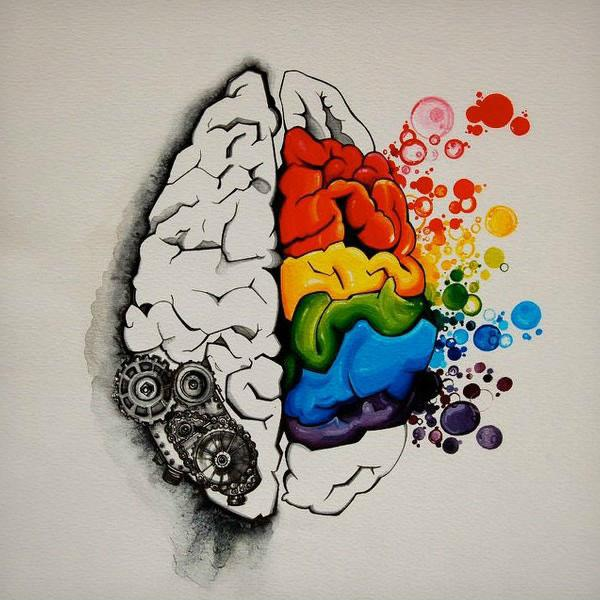 {This is your brain doing crafts.} Attention knitters/artisans/woodworkers: http://t.co/Y5CyrJ2IDY http://t.co/IXlg83Cixt