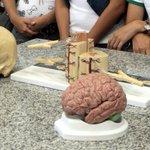 MEC: nenhum curso de Medicina recebe nota máxima e 17% são reprovados. http://t.co/NdRbpo0Qza http://t.co/SaSUnjVJFe