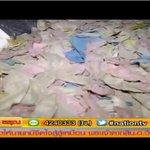 พบถุงยางอนามัยใช้เเล้วเกลื่อนถนน ไร้หน่วยงานดูแล #ข่าวข้นรับอรุณ #nationtv ชมคลิป http://t.co/kAMroVJrmE http://t.co/bMCwz44aGf