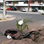 Lindo cráter en Avda Venezuela y España. CC: @enriquevp @Ferreiromario1 @oscartuma @oscar_marandu @GuillDomaniczky http://t.co/CffkwPjPrQ