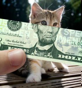 Ну как вы, котики, скучали без меня? http://t.co/VlDDQyf8fA