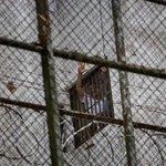 Difieren audiencia de Leopoldo López para el 5 de enero http://t.co/Xi6Vt2oTPP http://t.co/sPmRob4mJd