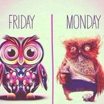 Why worry about Monday when its Friday!!! #tgif #happyweekend #weekend #friday #papillonapparel #asheville http://t.co/0NSc5w3Ep6