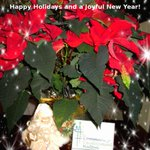 Wishing you a bright and warm Holiday Season and a Happy New Year from everyone at Volunteer Halton @ComDevHalton http://t.co/ZPHI9iCyzp