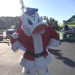 Hey @AnaheimDucks fans!!! #WildWing is here!! Stop by and say hi @HondaCenter #abc7holiday http://t.co/c4n6KpGtjK
