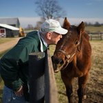 Farm saves retired racehorses from slaughter http://t.co/176ohxvpm7 @CJ_Jennie @MichaelBlowen @Oldfriendsfarm http://t.co/v7k19aEHkA