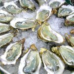 50 cent Oyster Fridays - all day! #yyj http://t.co/Qer0Kz2W81