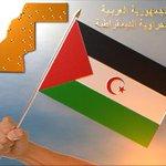 #KenzaMorsli #StaracArabia في بداية السنة الجديدة نطلب من الله ان ينصر اخوتنا الصحراويين على اعدائهم الغاصبين http://t.co/P8M9KAyq4S