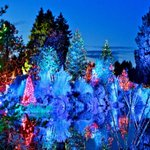 #vancouver at #christmas time. Aaaaawwww Bright Nights in Stanley Park. Great pic from @huffpostbc http://t.co/czjwj2Diui