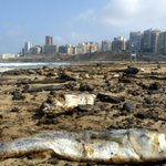 UN to Israel: Pay Lebanon $850 million for 2006 oil spill http://t.co/D6vSLX6E6z http://t.co/wuXcX6VQhA