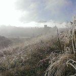 Cencellada y brumas está mañana en #Segovia paisaje de ensueño http://t.co/SFnZGE6J38