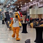 .@Truman_TheTiger, @1_mizzou, @MizGoldenGirls & @MarchingMizzou are firing up the crowd at our Braggin Rights rally! http://t.co/P5hMwT7rBu