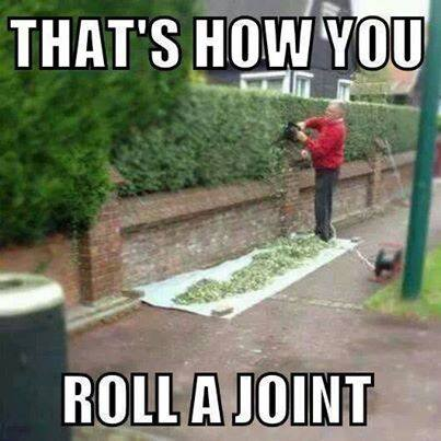 That's how you roll a joint! http://t.co/TVYzIJkOrL