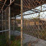 Right Before The Holidays: Four More Detainees Release from Gitmo http://t.co/nFK6mH1Dev via @Kredo0 http://t.co/nl99MMtUPu
