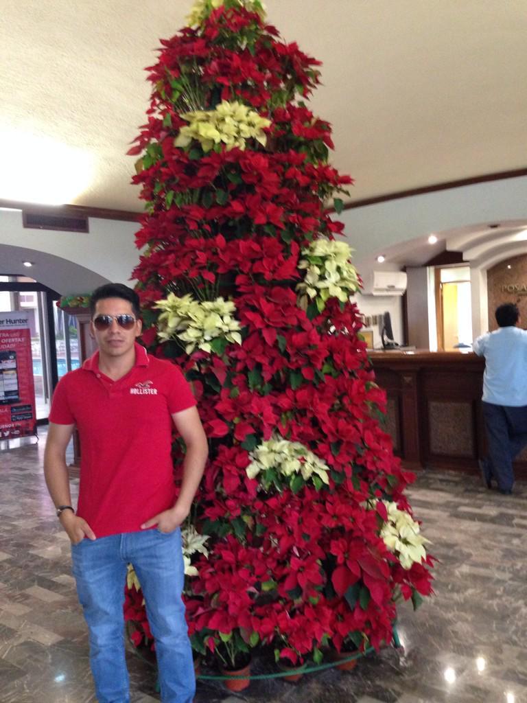 Arturo Vargas Rios (@LosPrimosArturo): #FelizNavidad http://t.co/4SPUh9dRlz