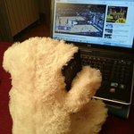 Oggi nella gara contro @PallacMantovana una pioggia di orsetti biancorossi per #TeddyBearToss #NoiSiamoiBiancorossi http://t.co/Ww58uE06wO