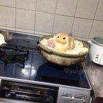 今夜はウサギ鍋です。 #大根おろしアート http://t.co/VpKU9fte0u