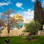 يا قُدسُ .. #قبة_الصخرة #فلسطين ..❤️ http://t.co/uTEqMjAKP3